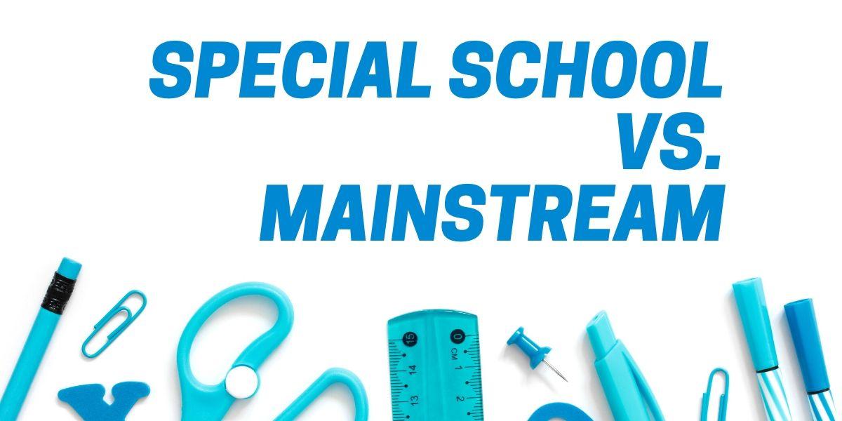 Special School vs Mainstream Blog